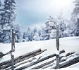 Fence covered with snow with trees on a background
