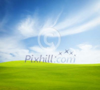 Grass field with sky