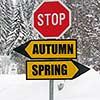 autumn and spring roadsign at cold winter day